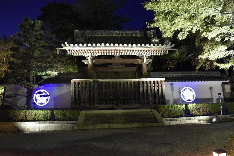 西教寺ライトアップ4