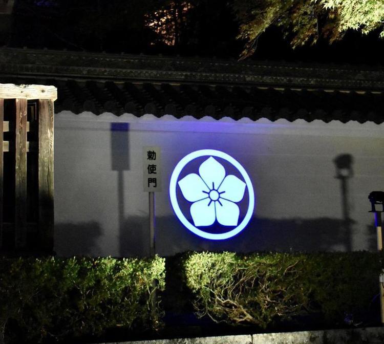 西教寺ライトアップ7
