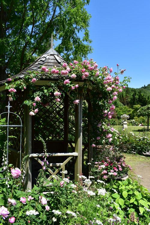 rb-バラと宿根草の庭-縦.jpg