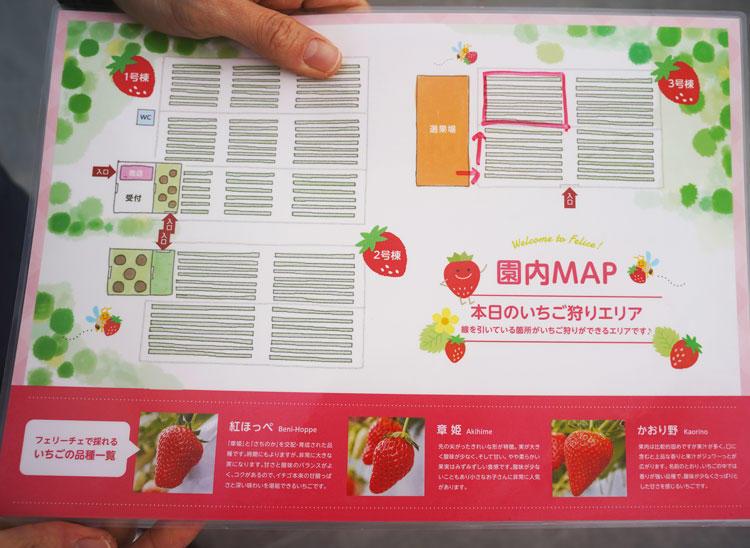フェリーチェマップ.jpg