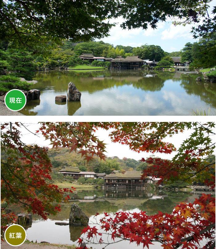http://www.biwako-visitors.jp/staff/blog/50e684748629eed5b698eff33dcf1a7f3e3ec688.jpg