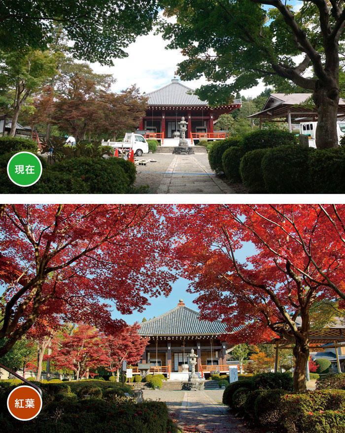 http://www.biwako-visitors.jp/staff/blog/9ecdfac30392adcaf5f77c5009f6aad32de237d5.jpg