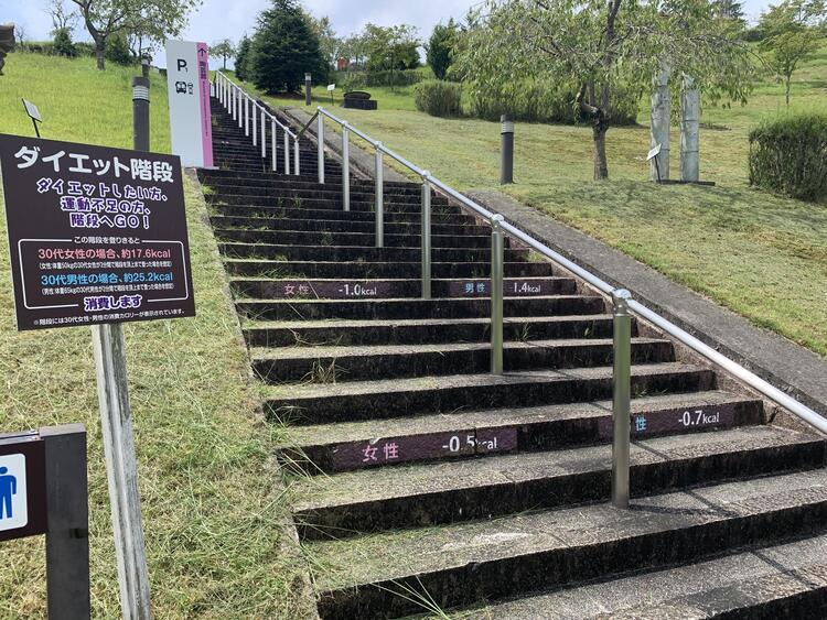 陶芸の森 ダイエット階段