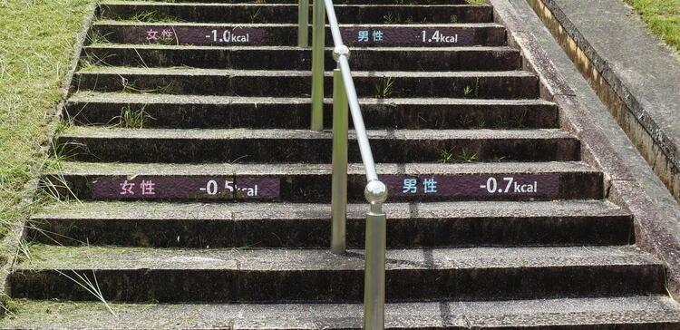 陶芸の森 ダイエット階段2