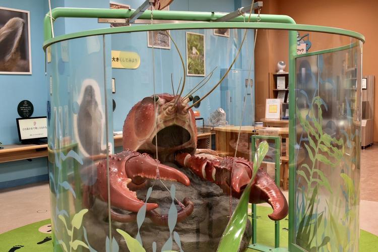 琵琶湖博物館4