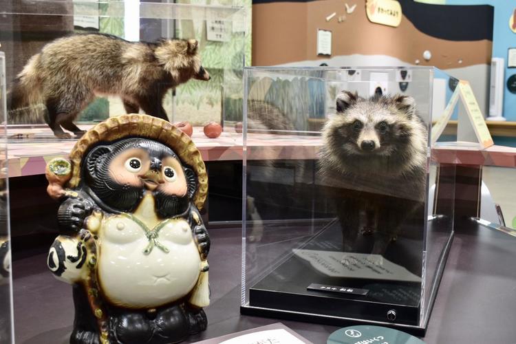 琵琶湖博物館5