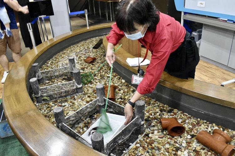 琵琶湖博物館7