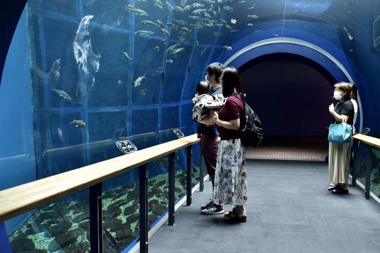 琵琶湖博物館トンネル