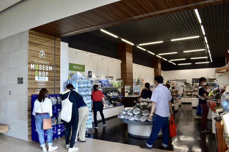 琵琶湖博物館10売店