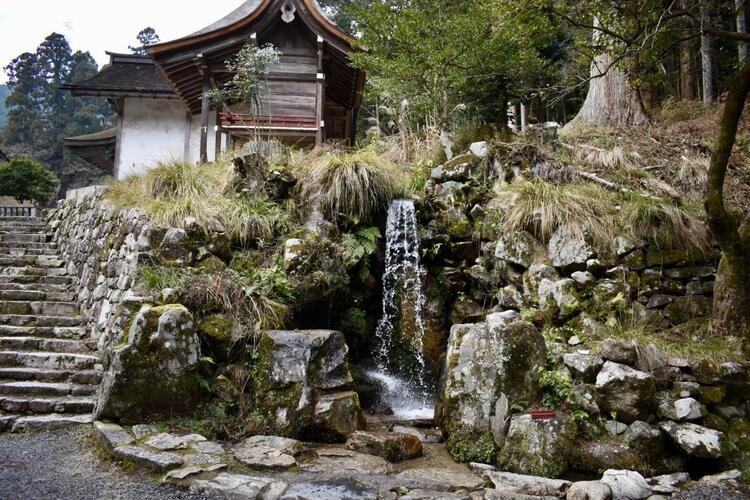 日吉大社境内の水1