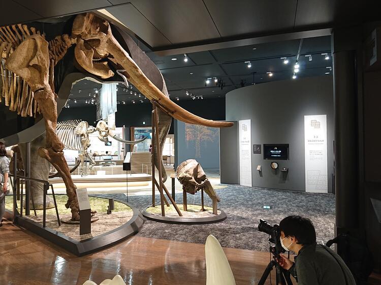 琵琶湖博物館2.jpg