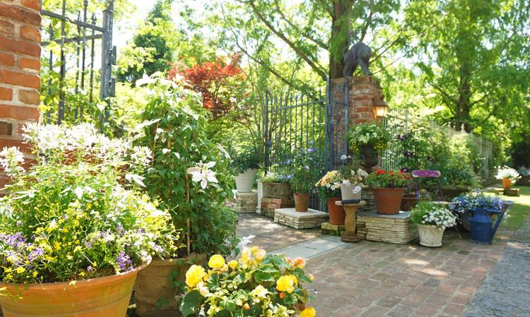 rb-バラと宿根草の庭-パンサー.jpg