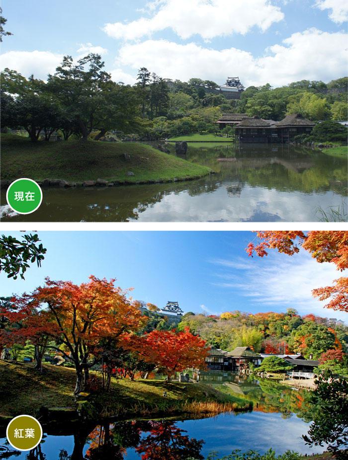 http://www.biwako-visitors.jp/staff/blog/acfc274d8dabd12291020202f1c10bf4e476fdc5.jpg