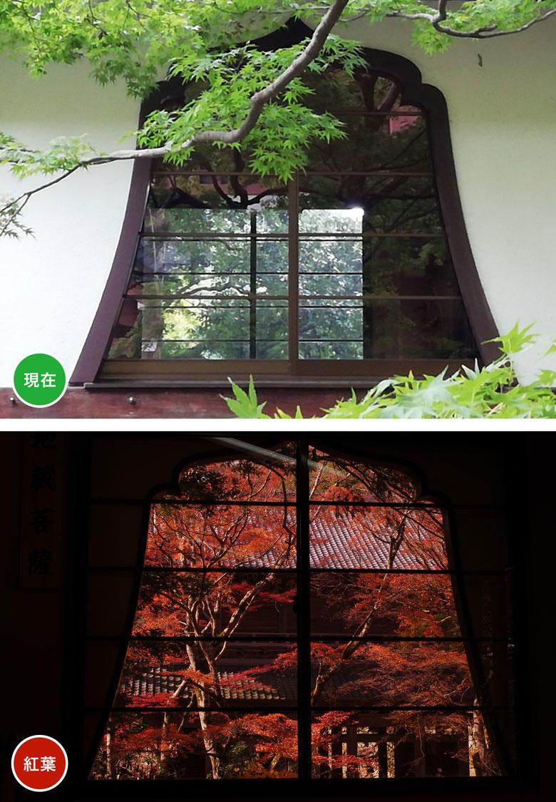 永源寺-窓.jpg