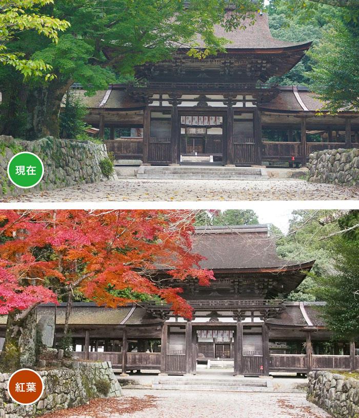 油日神社.jpg