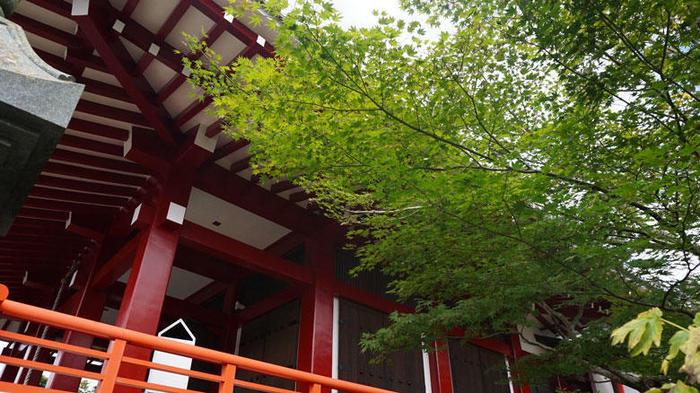 櫟野寺-紅葉.jpg