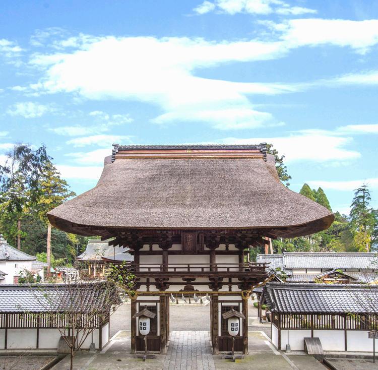 沙沙貴神社-門-画像-明るい調整.jpg